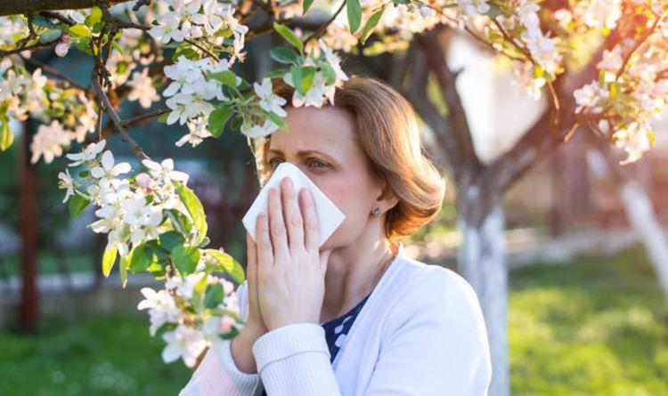 Diseases that accompany summer