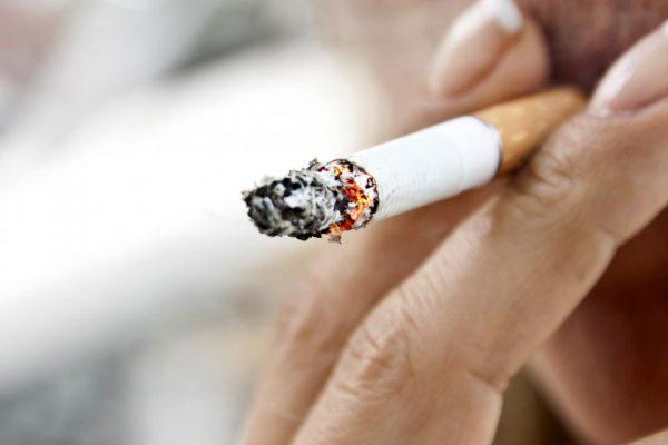 """The poisonous """"cigarette"""""""